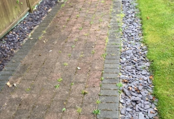 Brick Path Cleaning Hampshire