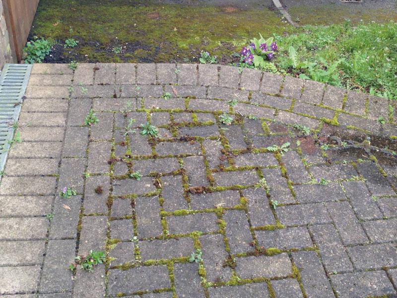 how to clean driveway bricks