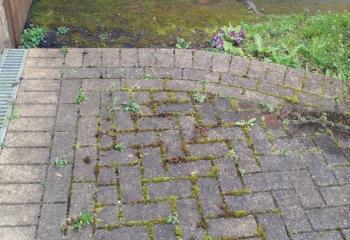 Brick Driveway Cleaning Basingstoke