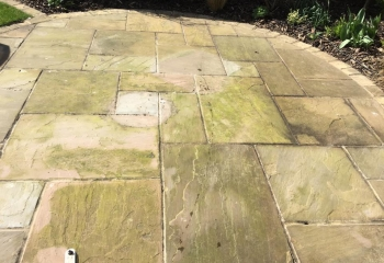 Patio Cleaning Service Basingstoke